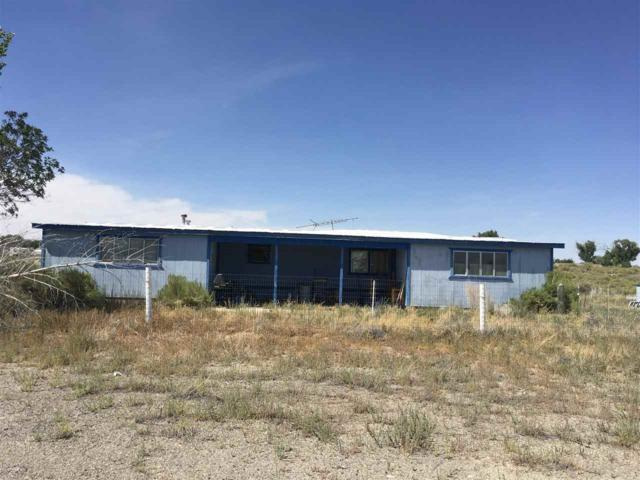 3491 Testolin Road, Fallon, NV 89406 (MLS #190011637) :: NVGemme Real Estate