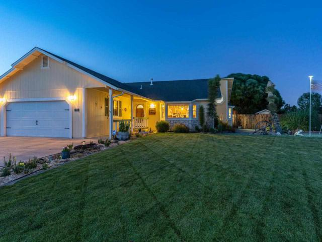 120 Mia Drive, Sparks, NV 89436 (MLS #190011787) :: Chase International Real Estate