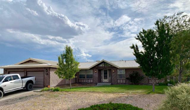 1408 Saltbrush Ct, Tonopah, NV 89049 (MLS #190011823) :: Chase International Real Estate