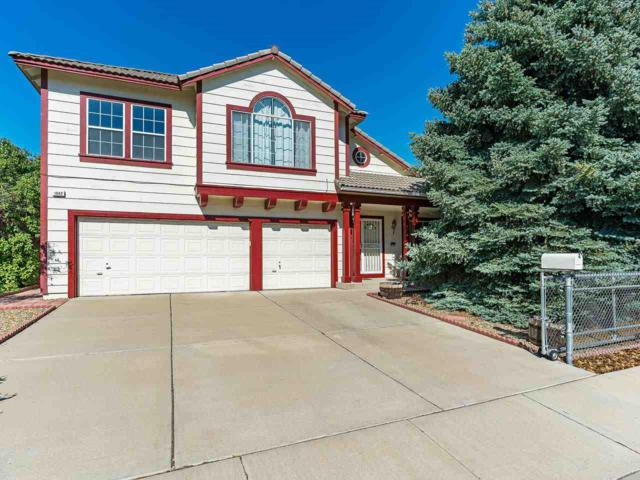 1042 Ricco Drive, Sparks, NV 89434 (MLS #190011918) :: NVGemme Real Estate