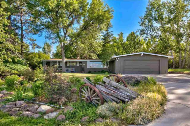 3550 Lamay Ln, Reno, NV 89511 (MLS #190012182) :: Joshua Fink Group