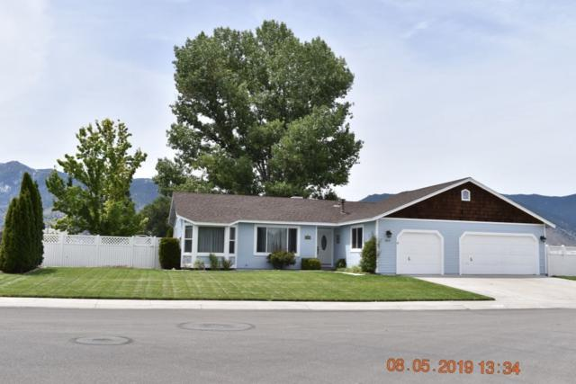 817 Mahogany Dr., Minden, NV 89423 (MLS #190012214) :: Theresa Nelson Real Estate