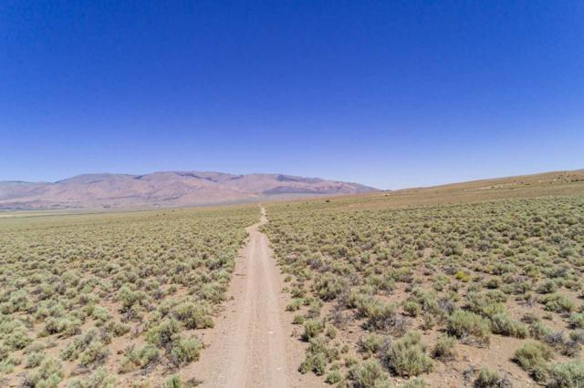 005 Eastside Ln., Topaz, NV 89410 (MLS #190012235) :: The Hertz Team