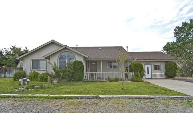 3753 Lyla Lane, Carson City, NV 89705 (MLS #190012236) :: Chase International Real Estate