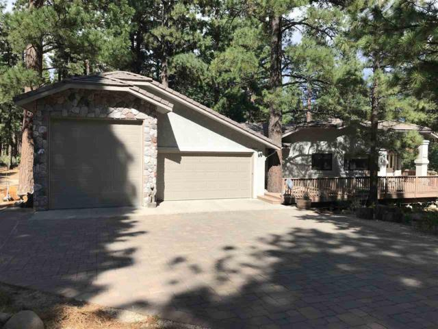 16975 Mountain Bluebird, Reno, NV 89511 (MLS #190012299) :: Joshua Fink Group