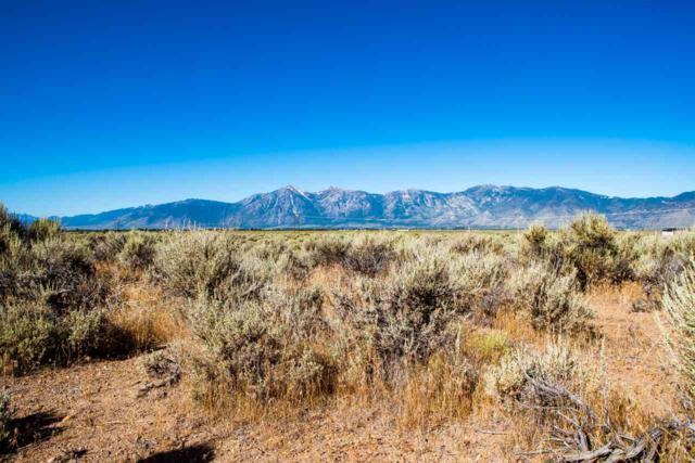 2013 East Valley, Minden, NV 89423 (MLS #190012332) :: NVGemme Real Estate