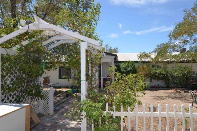 1460 W Antelope, Silver Springs, NV 89429 (MLS #190012351) :: Ferrari-Lund Real Estate