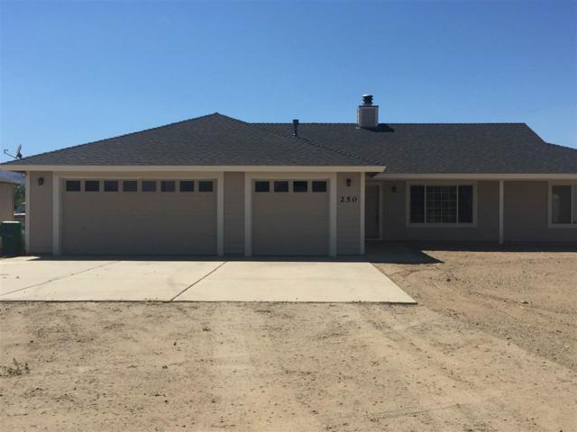 250 Sutro Road, Dayton, NV 89403 (MLS #190012516) :: Vaulet Group Real Estate