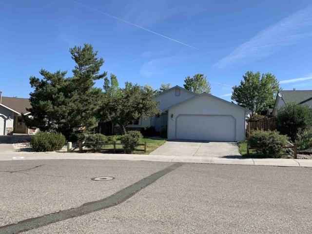 984 Starleaf Ct., Carson City, NV 89705 (MLS #190012551) :: Chase International Real Estate