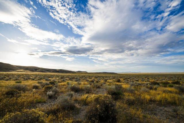 0 Powerline Rd Off, Fallon, NV 89406 (MLS #190012602) :: The Mike Wood Team