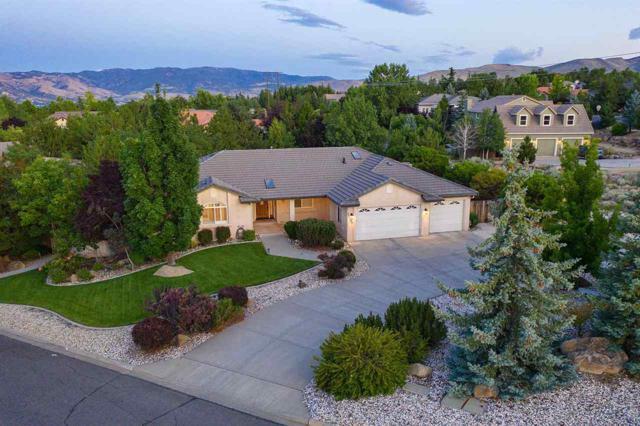 12520 Water Lily, Reno, NV 89511 (MLS #190012660) :: Chase International Real Estate