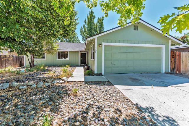 253 Sarah Dr., Carson City, NV 89706 (MLS #190012668) :: Chase International Real Estate