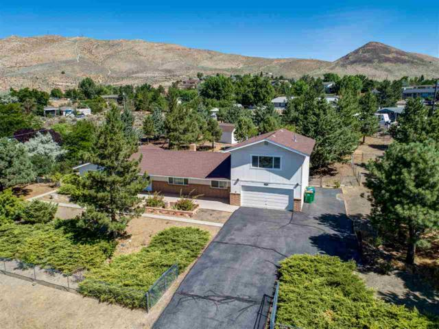 1250 S Sutro Terrace, Carson City, NV 89706 (MLS #190012672) :: Ferrari-Lund Real Estate