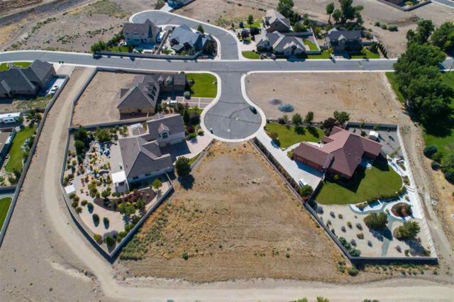 230 Cecina Dr, Dayton, NV 89403 (MLS #190012673) :: NVGemme Real Estate