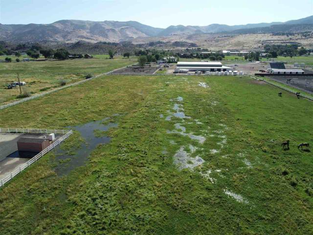 19705 Annie Lane, Reno, NV 89521 (MLS #190012693) :: Harcourts NV1