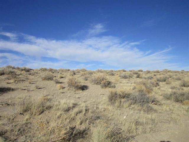 8480 Sycamore St., Silver Springs, NV 89429 (MLS #190014305) :: Chase International Real Estate