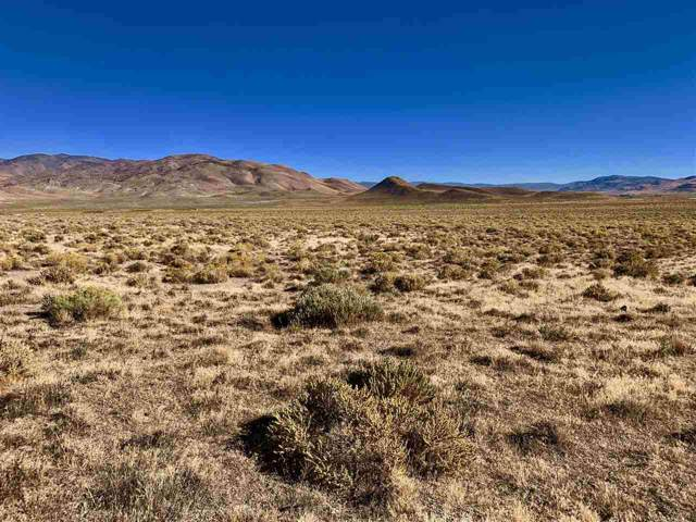 6500 Grass Valley Rd, Reno, NV 89510 (MLS #190014434) :: Vaulet Group Real Estate
