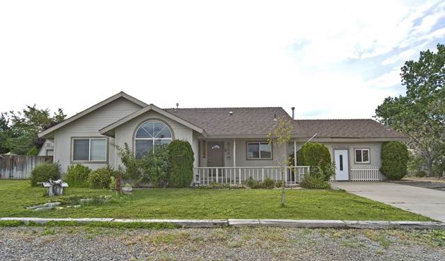 3753 Lyla Lane, Carson City, NV 89795 (MLS #190014482) :: Harcourts NV1