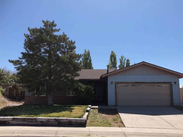1303 Hopsage Ct, Tonopah, NV 89049 (MLS #190014515) :: Northern Nevada Real Estate Group