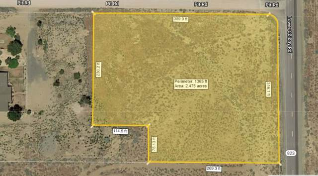 53 Lower Colony Road, Wellington, NV 89444 (MLS #190014536) :: Ferrari-Lund Real Estate