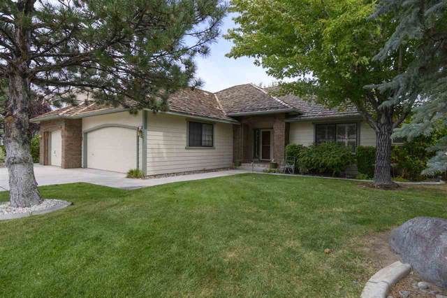 337 Bayhill, Dayton, NV 89403 (MLS #190014700) :: NVGemme Real Estate