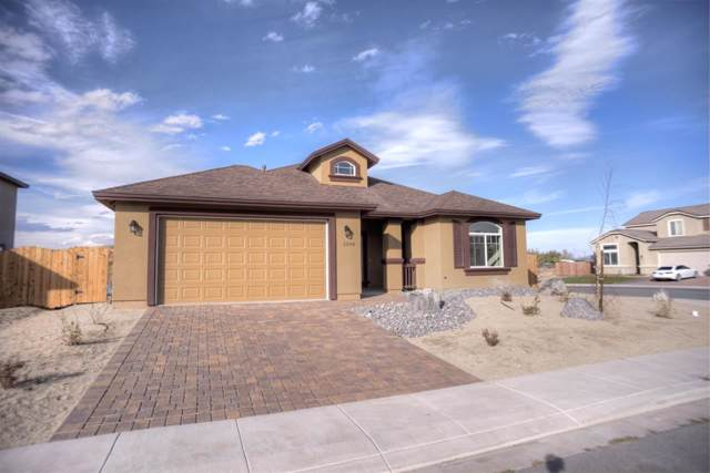 2230 Nightingale Ct, Fernley, NV 89408 (MLS #190014719) :: Chase International Real Estate