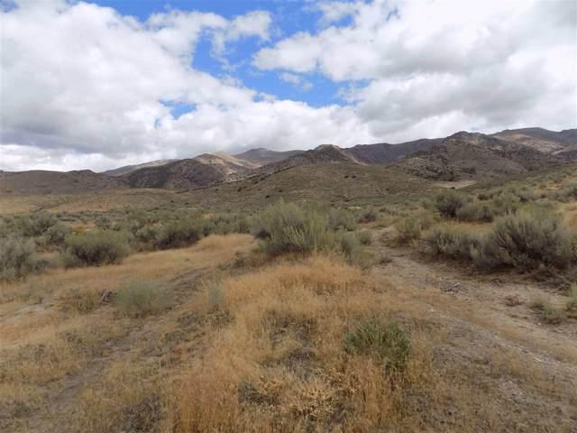 22070 Winter River Drive, Lovelock, NV 89419 (MLS #190014794) :: Northern Nevada Real Estate Group