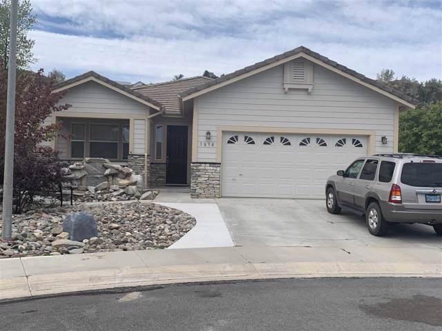 1050 Chip Crt, Minden, NV 89423 (MLS #190014812) :: NVGemme Real Estate