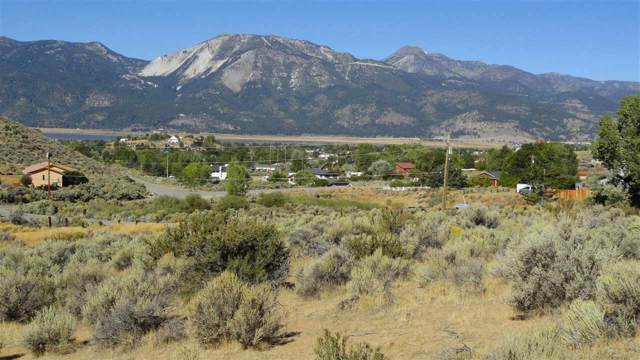 4395 Drake Way, Washoe Valley, NV 89704 (MLS #190014979) :: Northern Nevada Real Estate Group