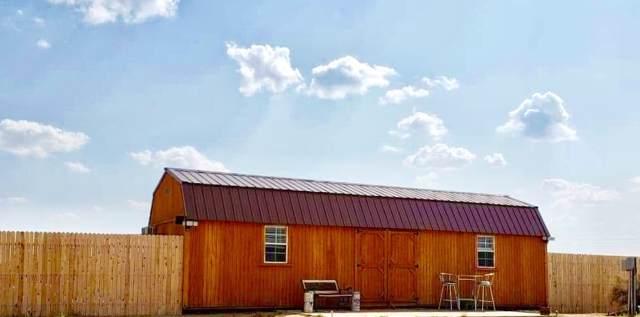 4970 Soda Lake Road, Fallon, NV 89406 (MLS #190014987) :: Ferrari-Lund Real Estate