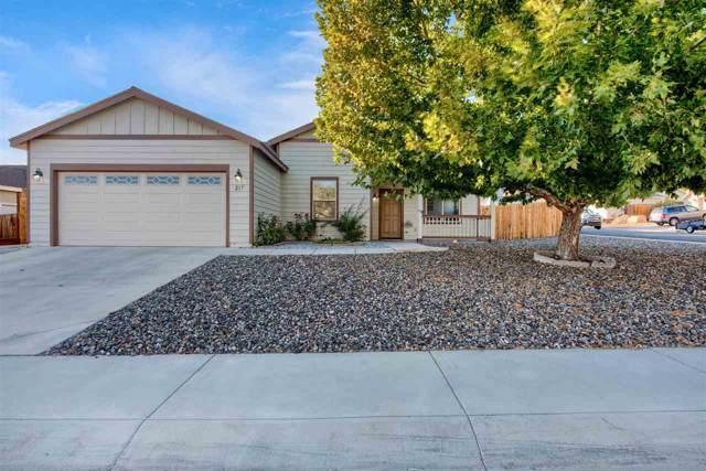 217 Harkin Cir, Dayton, NV 89403 (MLS #190014993) :: NVGemme Real Estate