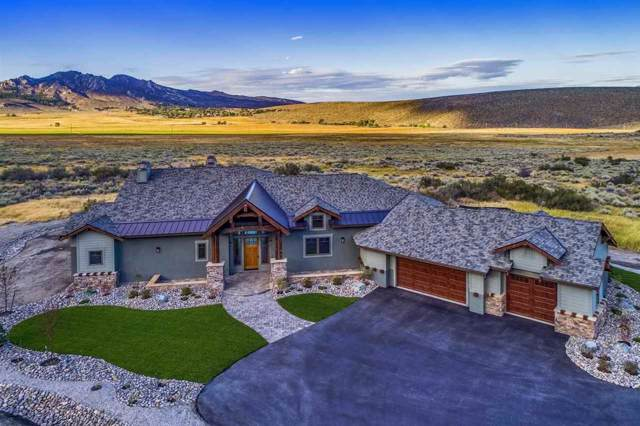 316 James Canyon Loop, Genoa, NV 89411 (MLS #190015067) :: Harcourts NV1