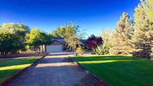 4400 Alcorn Road, Fallon, NV 89406 (MLS #190015120) :: Ferrari-Lund Real Estate