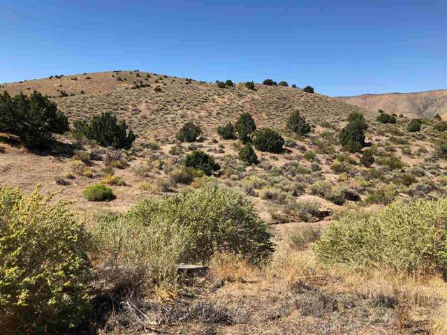 45 Wootton Downs Drive, Sparks, NV 89441 (MLS #190015177) :: NVGemme Real Estate