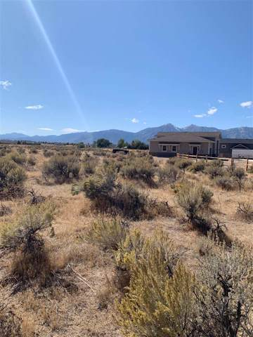 1789 Grandview, Minden, NV 89423 (MLS #190015337) :: NVGemme Real Estate