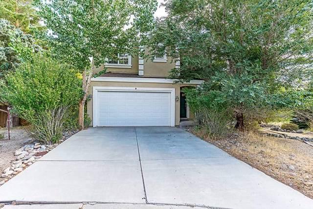 9 Savage, Carson City, NV 89703 (MLS #190015371) :: NVGemme Real Estate