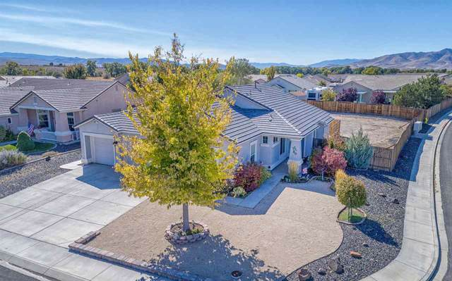 1601 Dandelion Ct, Dayton, NV 89403 (MLS #190015501) :: Chase International Real Estate