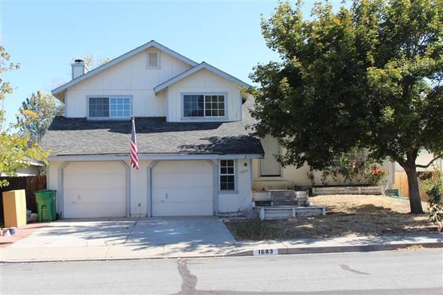 1683 Salmon Drive, Carson City, NV 89701 (MLS #190015524) :: Ferrari-Lund Real Estate