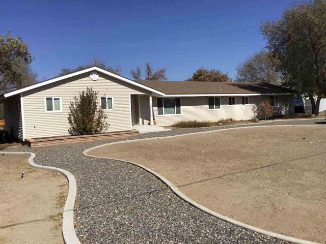 1340 Dennis Street, Minden, NV 89423 (MLS #190015792) :: Vaulet Group Real Estate