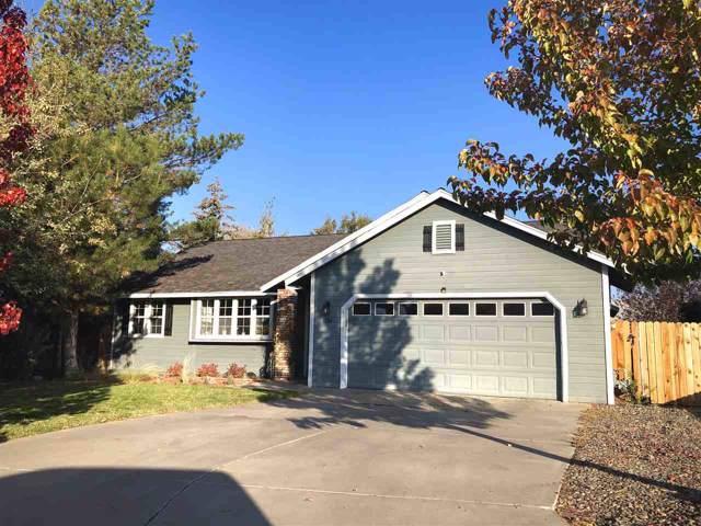 1294 Saddlebronc Ct, Minden, NV 89423 (MLS #190015825) :: Chase International Real Estate