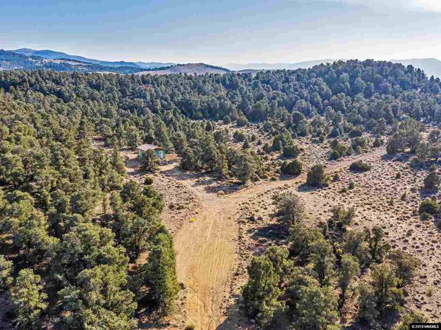 1360 Yellowjacket Road, Reno, NV 89521 (MLS #190016032) :: Vaulet Group Real Estate