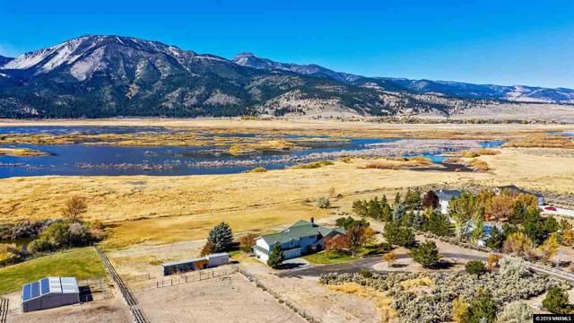 60 Darilyn Lane, Washoe Valley, NV 89704 (MLS #190016132) :: Vaulet Group Real Estate