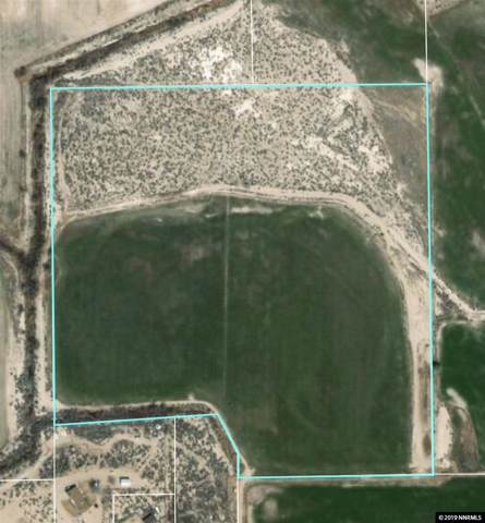 0 Lone Tree Road, Fallon, NV 89406 (MLS #190016230) :: Northern Nevada Real Estate Group