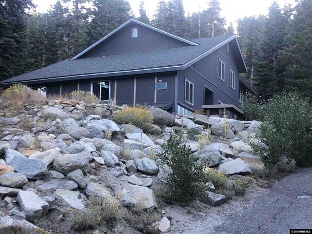 453 Andria Drive, Stateline, NV 89449 (MLS #190016346) :: NVGemme Real Estate