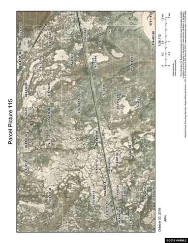 115 N Fish Springs Rail Road Track, Gerlach, NV 89412 (MLS #190016430) :: Joshua Fink Group