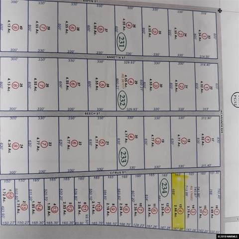 7130 Citrus, Silver Springs, NV 89429 (MLS #190016969) :: Northern Nevada Real Estate Group