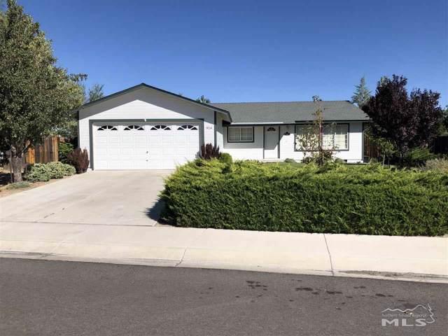 914 Nicole Street, Dayton, NV 89403 (MLS #190017629) :: Vaulet Group Real Estate