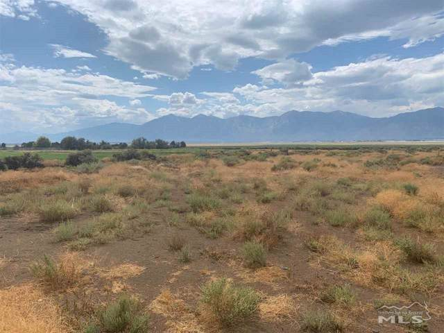 2565 Last Chance Ct., Minden, NV 89423 (MLS #190017646) :: The Mike Wood Team