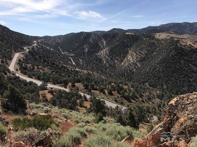 0 Geiger Grade Road, Reno, NV 89521 (MLS #190017885) :: Vaulet Group Real Estate
