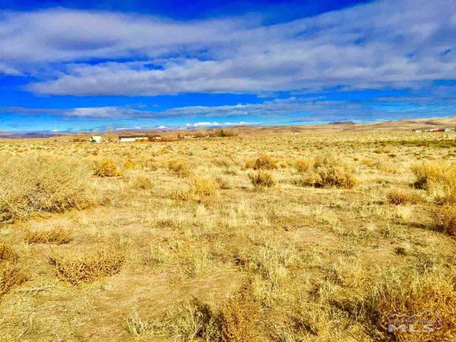 4460 E 6th Street, Silver Springs, NV 89429 (MLS #190018098) :: Harcourts NV1